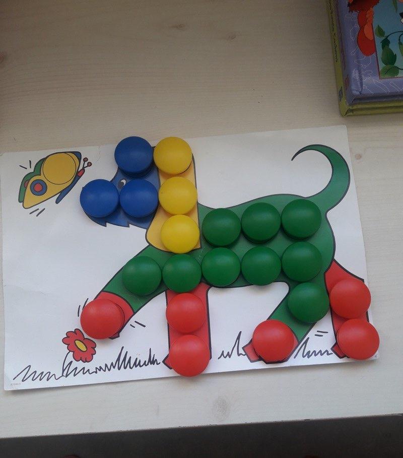 Zineb (GS) - Le chien