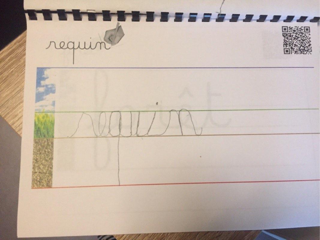 Nadi (GS) - écriture cursive de requin